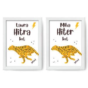 Hitra/hiter kot gepard